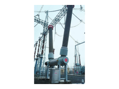 LW30A-800六氟化硫罐式断路器\山东秦开