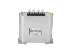 RHFK分相补偿型低压并联电容器\广东顺容