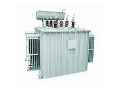 集合式高电压并联电容器\广东顺容