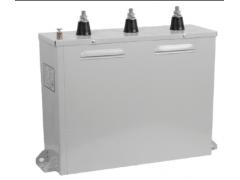 RHKK抗谐波低压型并联电容器\广东顺容