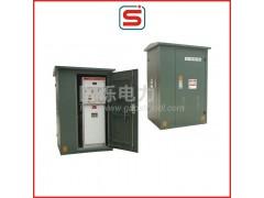 DFW户外高压环网柜(高压开闭所)\国烁电力