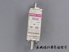 快速熔断器 RS30C 660V 100A TOWORLD\乐清长城