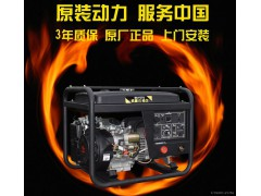 250A汽油电焊发电机 发电机电焊两用机电弧焊