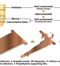 哥伦比亚大学研发新型仿生柔性锂离子电池