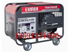 东洋汽油发电机TSN19000E