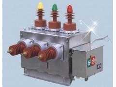 ZW10-12双电源真空断路器