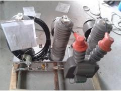 贵州高压开关厂10KVZW32-12看门狗断路器