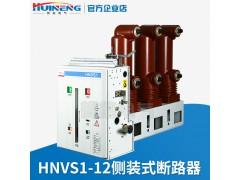 辉能ZN63(VS1)-12G侧装固封式户内高压真空断路器