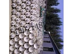 棒形复合绝缘子FXBW4-35/70线路硅橡胶绝缘子价格