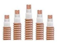 BTTZ-防火电缆