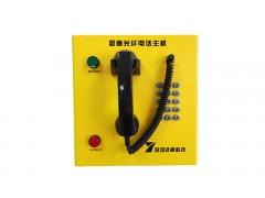 隧道紧急电话 隧道内紧急电话分机 紧急对讲电话