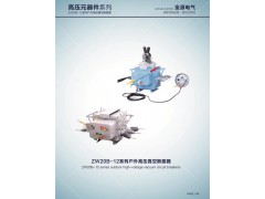 10KV高压真空断路器 ZW32-12/630 户外隔离开关